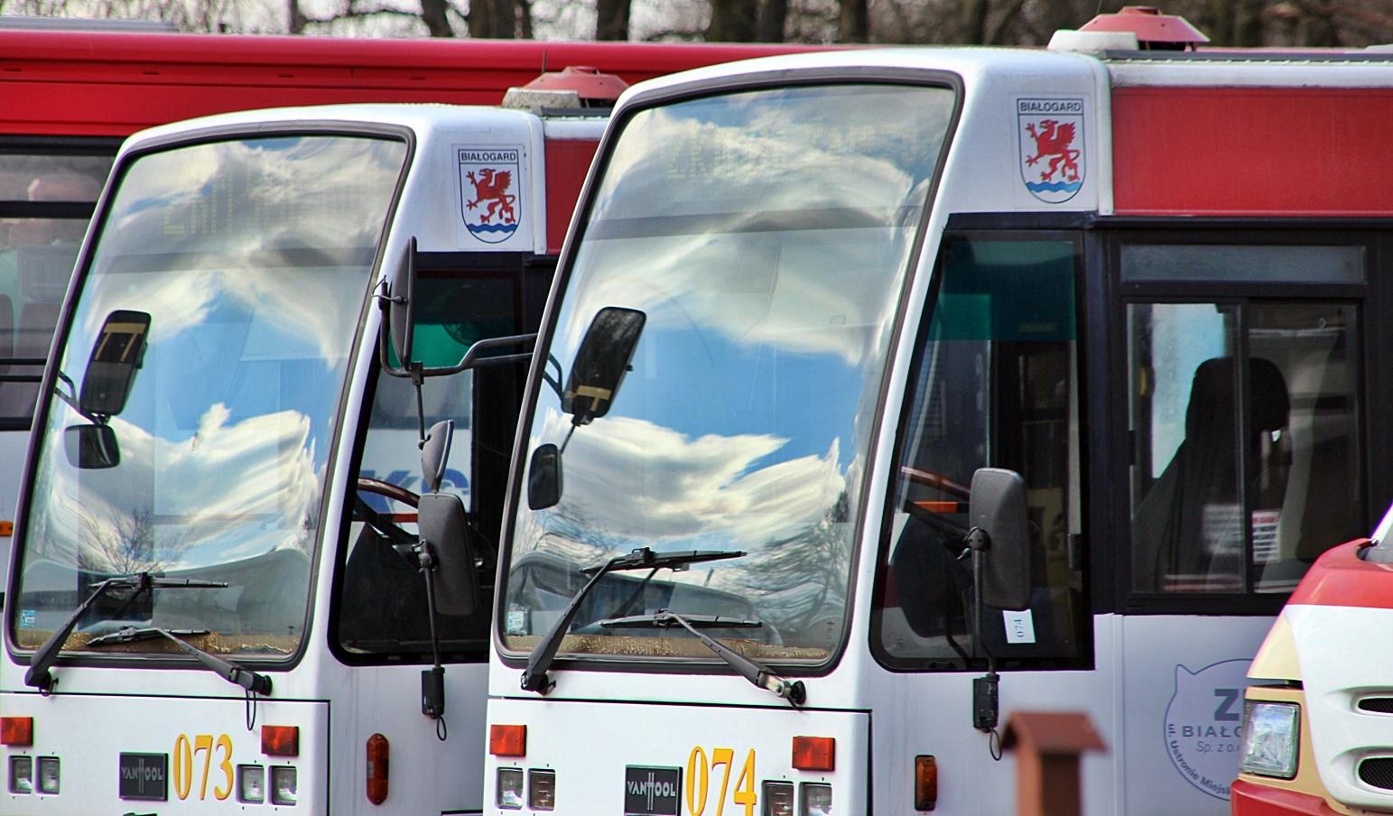 Nowe autobusy. Kurs na Białogard, Miasto Białogard